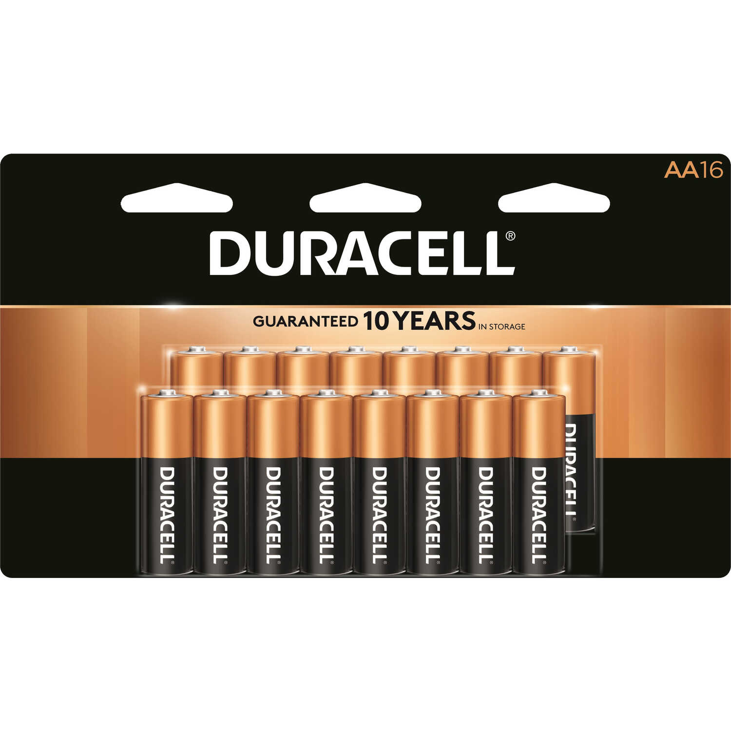 Duracell  Coppertop  AA  Alkaline  Batteries  1.5 volt 16 pk Carded