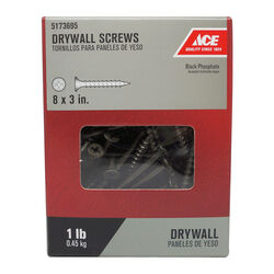 Ace  No. 8   x 3 in. L Phillips  Drywall Screws  1 lb. 173 pk
