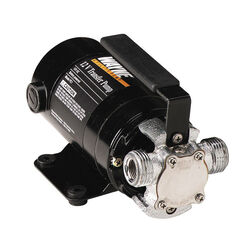 Wayne 1/8 hp 350 gph Chrome Plated Bronze Switchless Transfer Pump