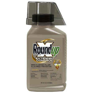 Roundup  Concentrate  Weed and Grass Killer  32 oz.