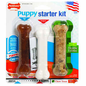 Nylabone  Starter Kit  Bacon and Chicken  Bone  For Dog 3 pk