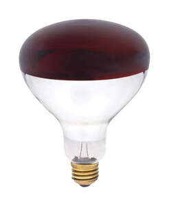 Westinghouse  Satco  250 watts R40  Incandescent Bulb  Reflector  1 pk Red