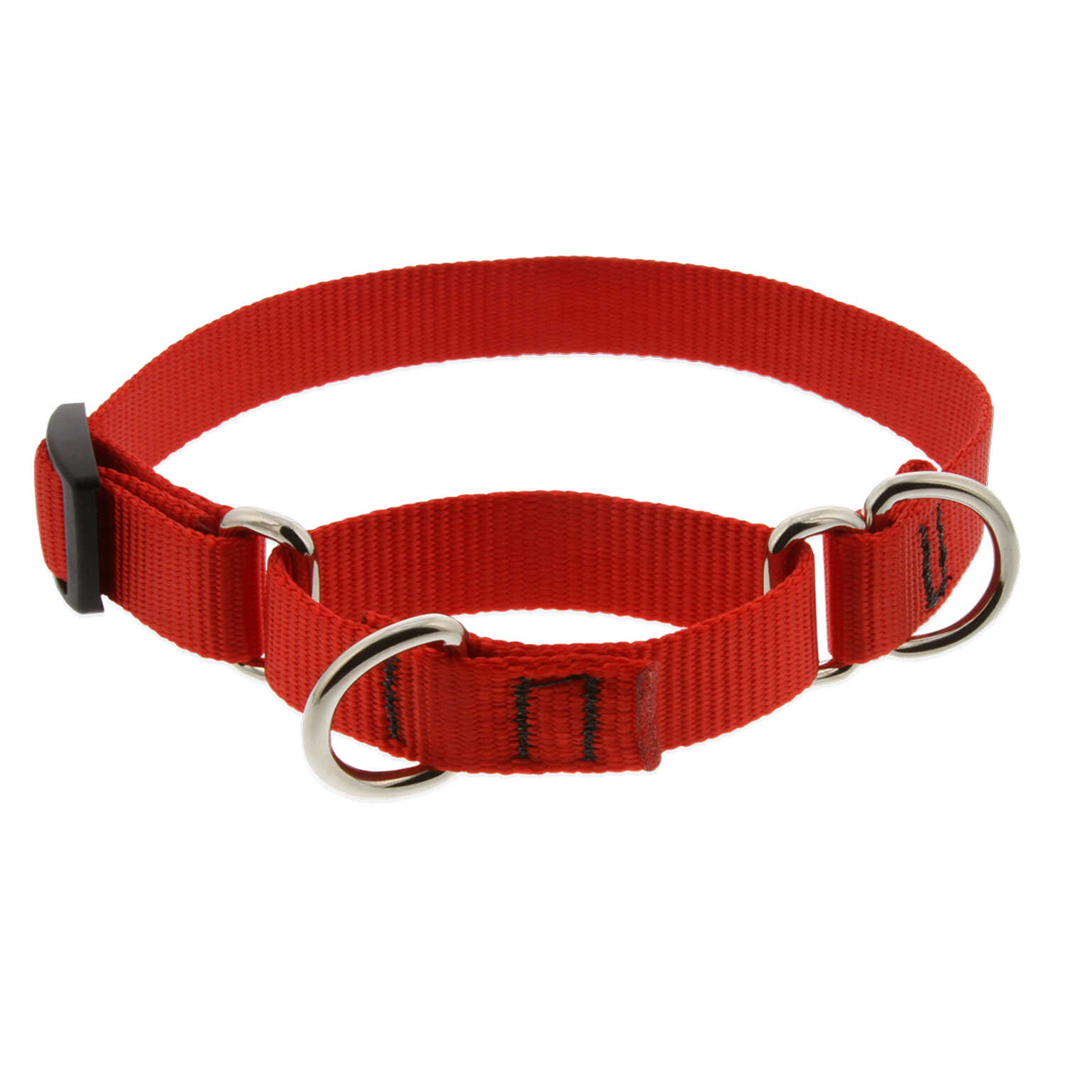 Lupine Pet  Basic Solids  Red  Red  Nylon  Dog  Collar
