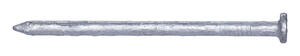 Pro-Fit  12D  3-1/4 in. L Common  Hot-Dipped Galvanized  Steel  Nail  Smooth Shank  Flat  50 lb.