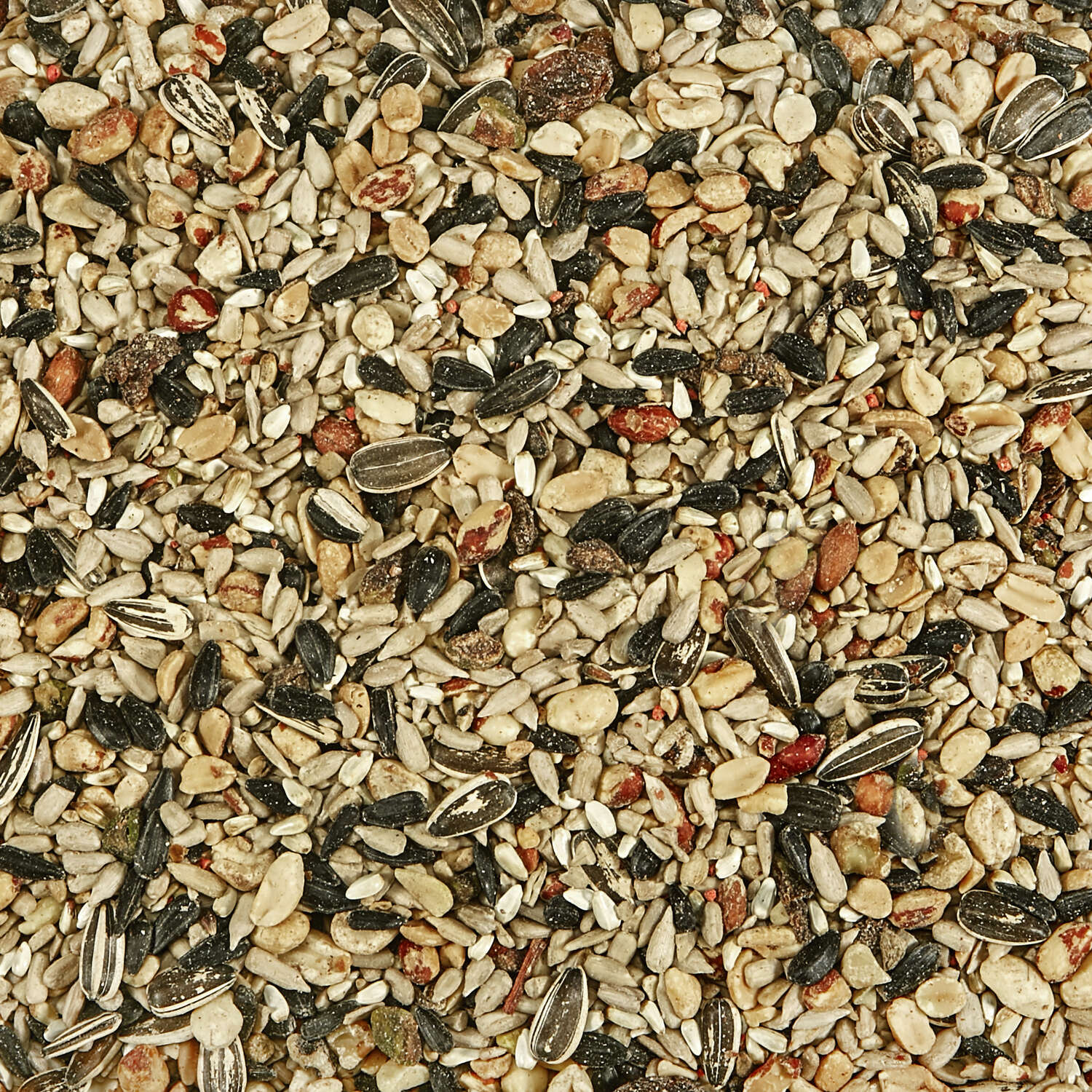 Kaytee  Assorted Species  Wild Bird Food  Fruits and Nuts  10 lb.