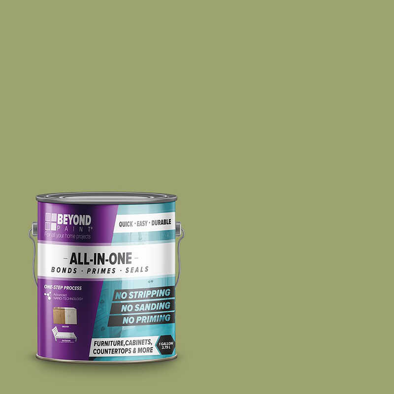 BEYOND PAINT  Matte  Sage  Water-Based  Acrylic  All-In-One Paint  1 gal.