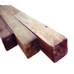 Alexandria Moulding  4 in. W x 8 ft. L x 4 in.  Pine  Post