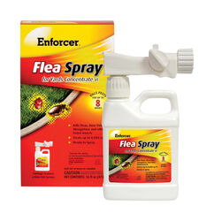 Enforcer  Flea Spray for Yards  Liquid  Insect Killer  16 oz.