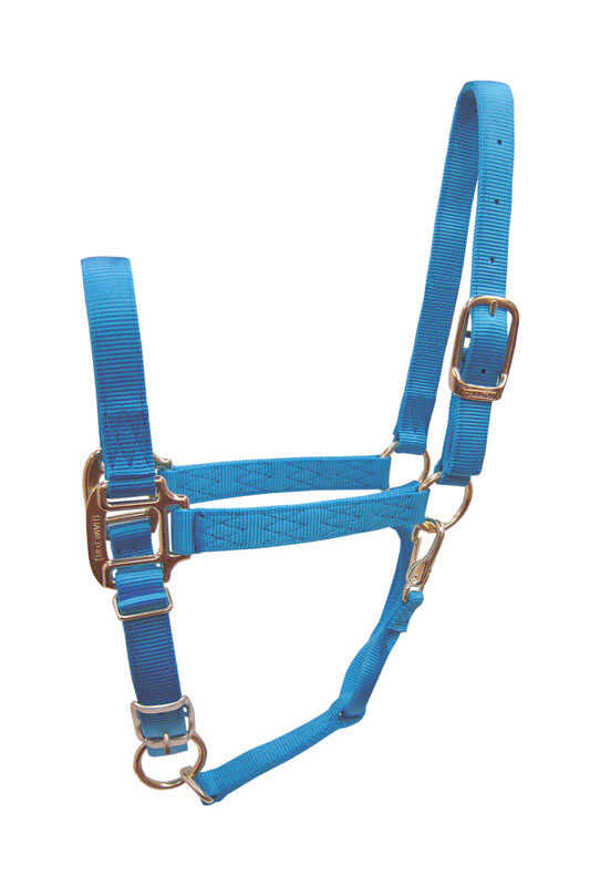 Hamilton  Nylon  Halter  Average