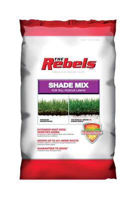 Pennington Seed  The Rebels  Tall Fescue  Shade  Grass Seed  3 lb.