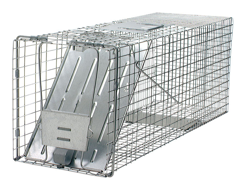 Havahart  Large  Live Catch  Animal Trap  For Cats, Raccoons 1 each