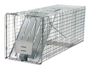 Havahart  Large  Live Catch  Animal Trap  For Raccoons, Cats 1 pk