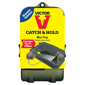Victor  Small  Multiple Catch  Animal Trap  For Mice 1 each