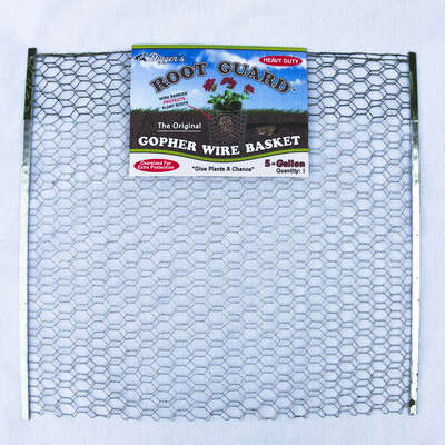 Diggers  Root Guard  20 in. H x 19 in. W x 0.2 in. D Silver  Coated Wire  Gopher Wire Basket