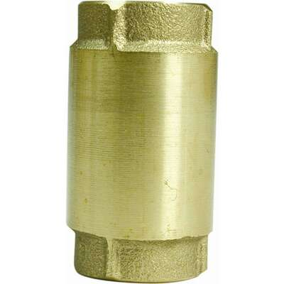 Parts 2O  Brass  Spring Check Valve