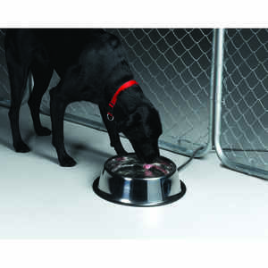 API  Silver  Stainless Steel  160 oz. Heated Pet Bowl  For Dog