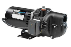 Wayne  Cast Iron  Jet Pump  3/4 hp 750 gph 115 volts