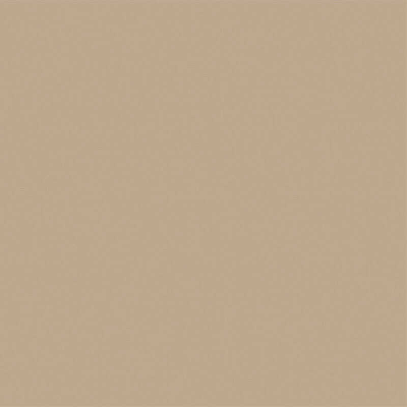 BEYOND PAINT  Matte  Khaki  All-In-One Paint  Acrylic  1 pt.