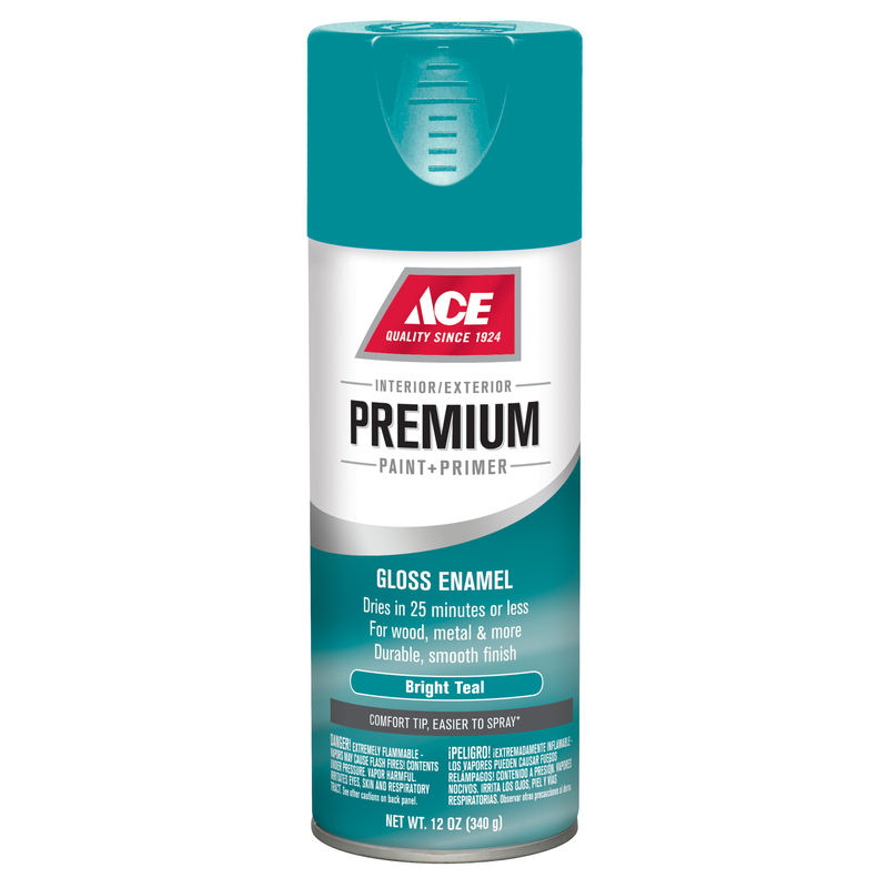 Ace  Premium  Gloss  Bright Teal  12 oz. Paint and Primer Spray Paint