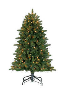 Polygroup  Clear  Prelit 4 ft. Artificial Tree  150 lights 404 tips Grand Fir