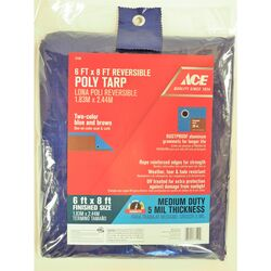 Ace  6 ft. W x 8 ft. L Medium Duty  Polyethylene  Tarp  Blue/Brown