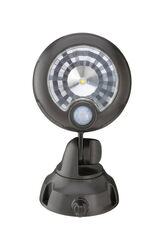 Mr. Beams  Motion-Sensing  Battery Powered  LED  Black  Spotlight