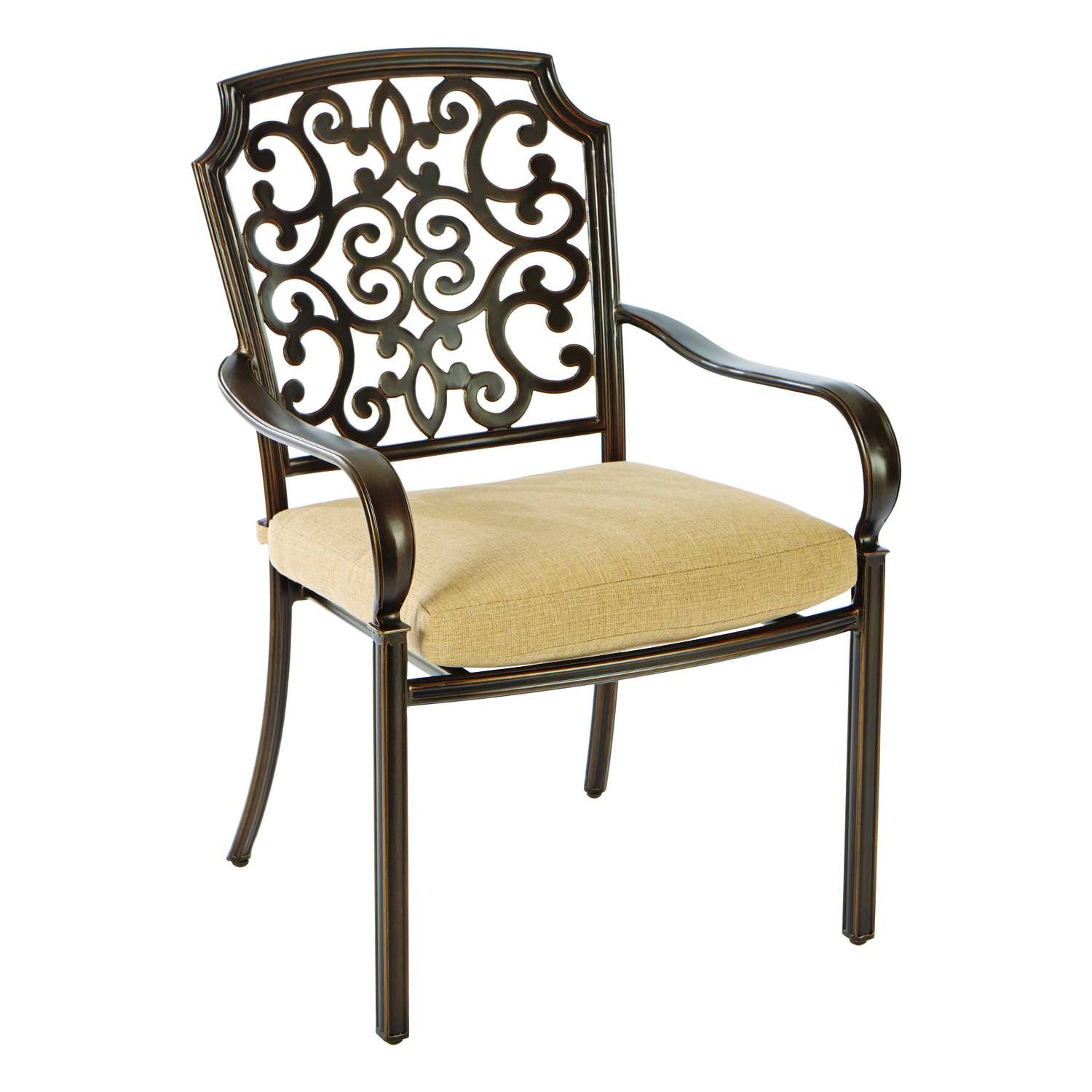 Living Accents  Brown  Aluminum  Chair