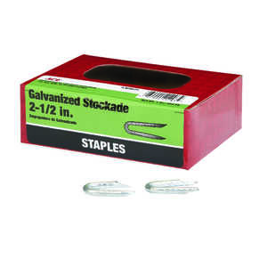 Ace  2-1/2 in. L x 1/4 in. W Steel  Fence Staples  13 Ga. 1 lb. Galvanized