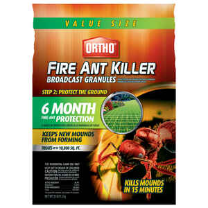 Insect Killers & Traps at Ace Hardware