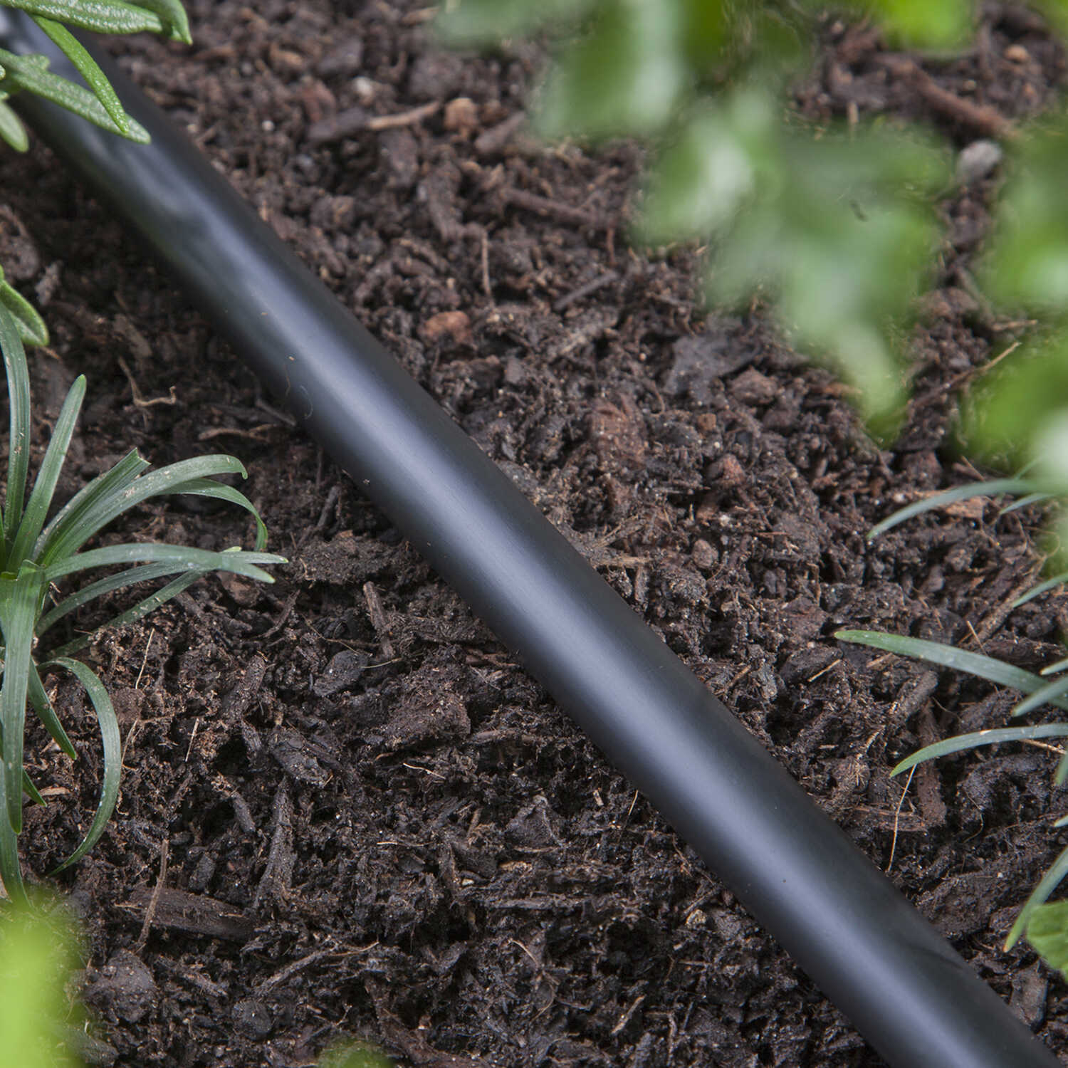 Raindrip  Polyethylene  Drip Irrigation Tubing  .710 in.  x 100 ft. L