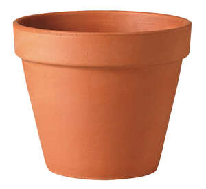 Deroma  3.94 in. H x 4 in. W x 4 in. L Terracotta Clay  Clay  Traditional  Planter