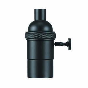 Globe  Matte  Black  1 lights Pendant Socket