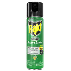 Raid  House & Garden  Insect Killer  11 oz.