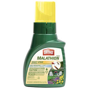 Ortho  Max Malathion  Insect Killer  16 oz.