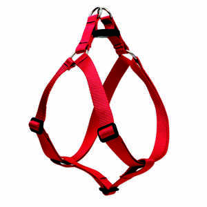 Lupine Pet  Basic Solids  Red  Nylon  Dog  Harness