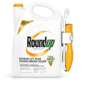 Roundup  RTU Liquid  Poison Ivy Plus Tough Brush Killer  1.33 gal.