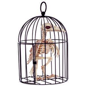 Seasons  Skeleton Crow in Cage  Halloween Decoration  9-3/4 in. H x 6-3/4 in. W x 6-3/4 in. L 1 pk