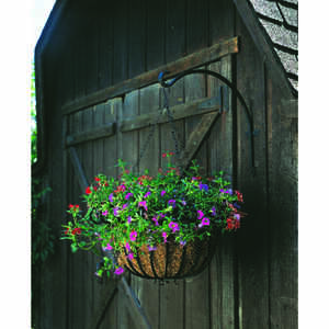 Panacea  Black  Iron  16 in. H Curved  Plant Hook