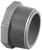 Charlotte Pipe  Schedule 80  3/4 in. MPT   x 3/4 in. Dia. MPT  PVC  Threaded Plug