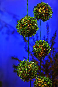 Living Accents  LED Topiary Ball  Clear  Light Set  7.5 ft.