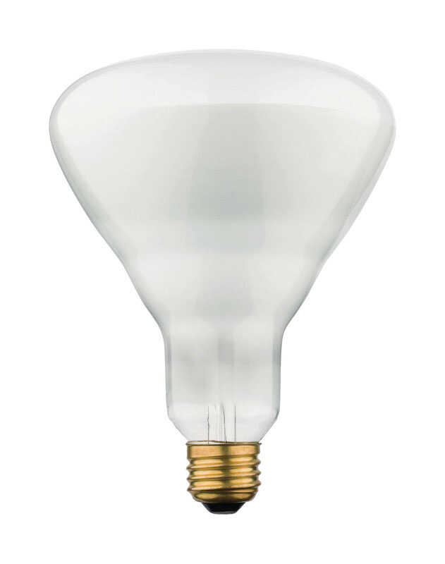 Westinghouse  65 watts BR40  Incandescent Bulb  715 lumens 6 pk White  Floodlight