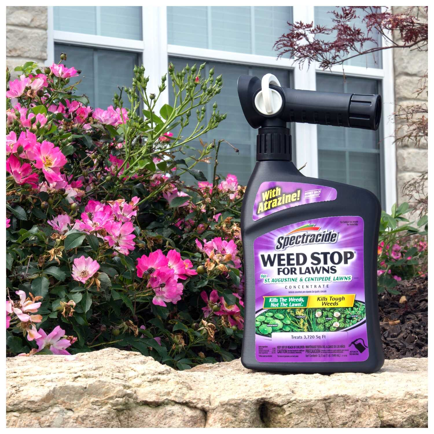 Spectracide  Weed Stop  Weed Killer  RTS Hose-End Concentrate  32 oz.