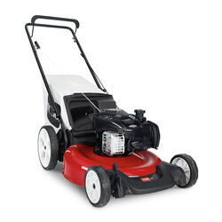 Toro Recycler 21332 21 in. 140 cc Gas Lawn Mower