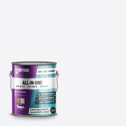 BEYOND PAINT Matte All-In-One Paint Exterior and Interior 32 g/L 1 gal.