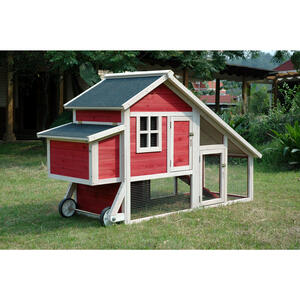 Merry Products  4 Chickens  Firwood  Chicken Coop