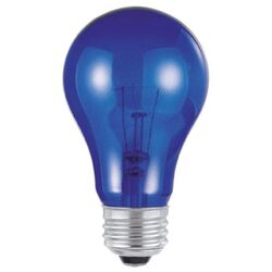 Westinghouse  25 watts A19  A-Line  Incandescent Bulb  E26 (Medium)  Blue  1 pk