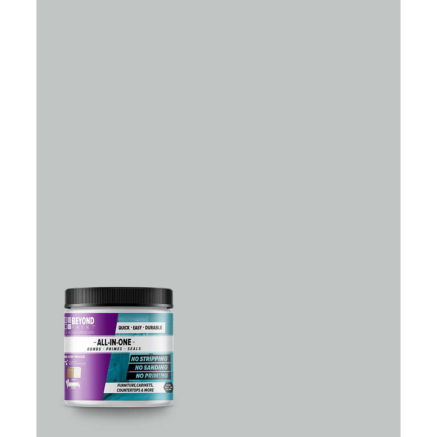 BEYOND PAINT  Matte  Ash  Acrylic  All-In-One Paint  1 pt.