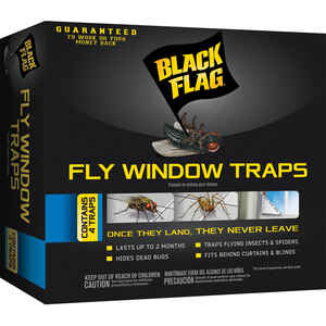 Black Flag  Fly Trap  4 pk