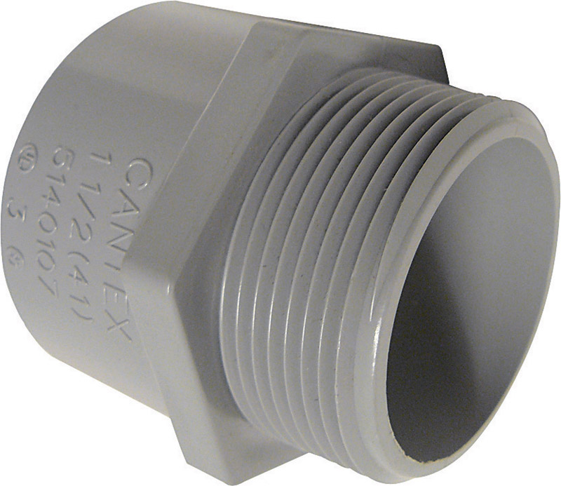 Cantex  1 in. Dia. PVC  Male Adapter  1 pk
