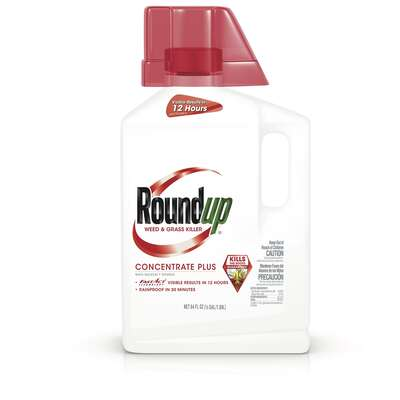 Roundup Grass & Weed Killer Concentrate 0.5 gal.